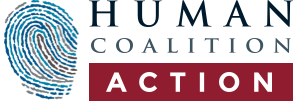 Human Coalition Action